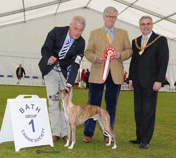 Hound Group1 6909 louisetope